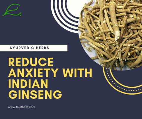 reduce anxiety with indian ginseng | Buy Ayurvedic Herbs & Products Online | Certified by Ayurveda Doctors | 100% genuine | Trustherb Ayurvedic products marketplace